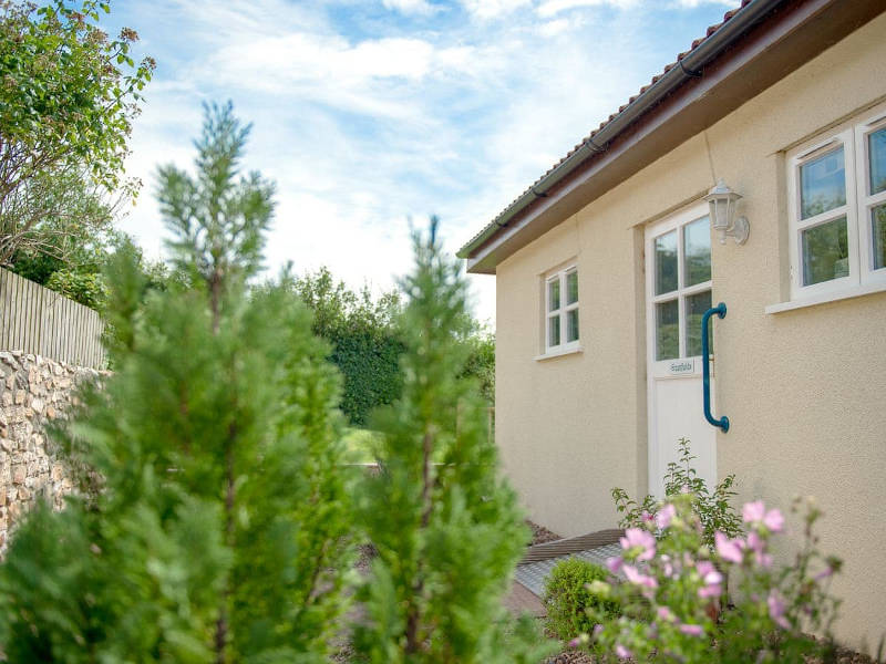 Disabled Holidays - Greenfields Bungalow, Devon, England