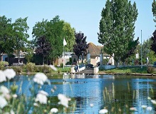 Disabled Holidays - Lakeside Coastal Village, Hampshire, England - UK