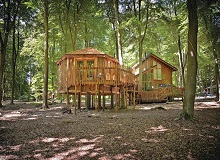 Disabled Holidays - Copper Beech Cabin - Forest Holidays, Shadwell, Norfolk, England