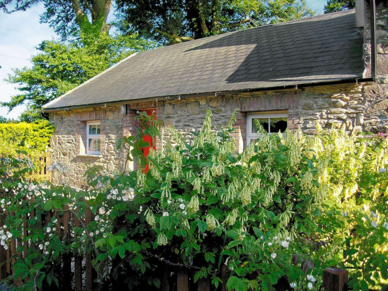 Disabled Holidays - Mill Cottage - Owners Direct, Ireland