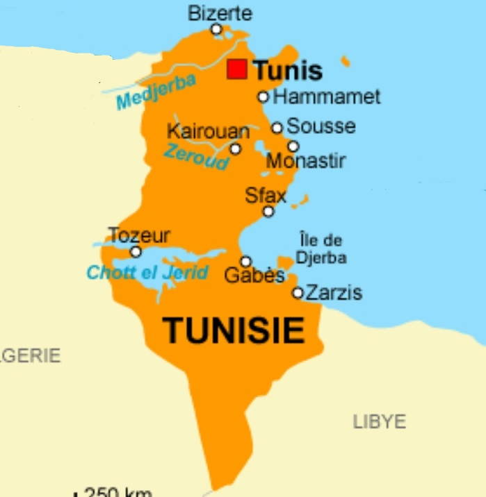 Accessible Hotels for Disabled Wheelchair users in Sousse, Tunisia
