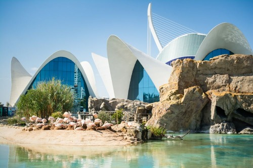 Disabled friendly accommodation in Valencia, Spain