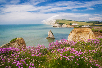 Holiday Ideas for Disabled in Isle Of Wight