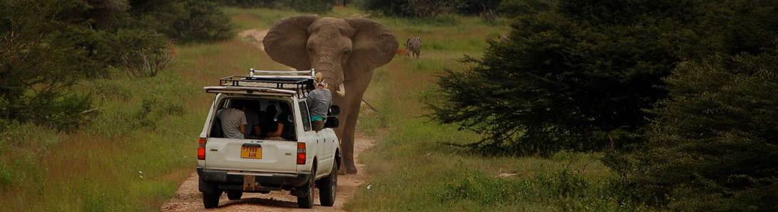 Accessible Tours in East Africa