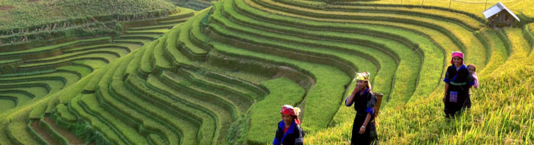 Accessible Tours in Vietnam