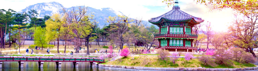 Accessible Tours in South Korea